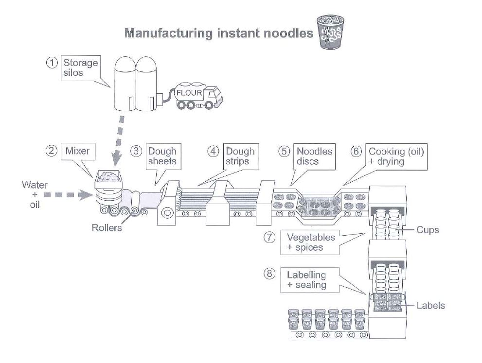 The diagram below shows how instant noodles are manufactured.